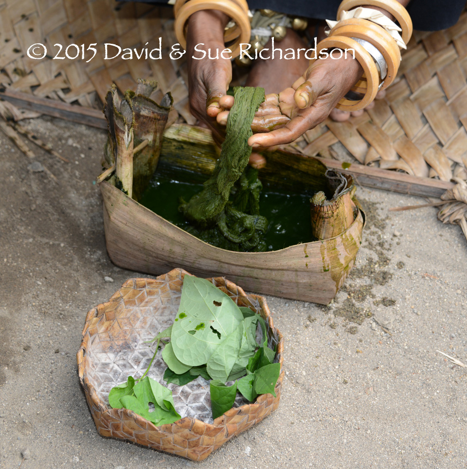 Description: Some of the leaves used to dye cotton an olive green at Doka in 2014